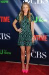 Celebrities Wonder 16425981_CBS-CW-And-Showtime-Party_A.J. Cook 1.JPG