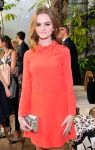 Celebrities Wonder 36994853_2014-CFDA-Vogue-Fashion-Fund-Event_Kerris Dorsey 2.jpg