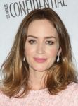 Celebrities Wonder 62456555_emily-blunt-2014-Hamilton-Behind-the-Camera-Awards_5.jpg