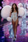 Celebrities Wonder 68384845_2014-Victorias-Secret-Fashion-Show-runway_Lily Aldridge 3.jpg