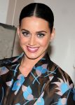 Celebrities Wonder 59453572_katy-perry_4.jpg
