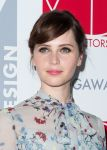 Celebrities Wonder 15476080_Art-Directors-Guild-Awards_Felicity Jones 2.jpg