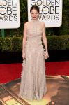 Celebrities Wonder 960122_golden-globe-red-carpet_Amanda Peet.jpg
