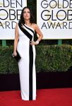Celebrities Wonder 20779870_2017-golden-globe_Julia Louis Dreyfus - Georges Chakra.jpg